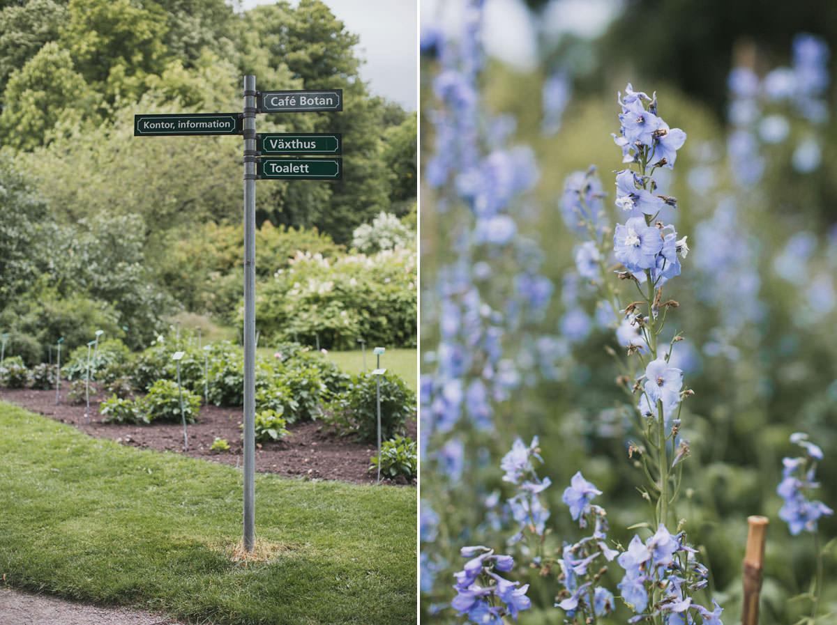 Skylt och blåa blommor i Botaniska Trädgården, Lund. Foto: bröllopsfotograf Tove Lundquist, verksam i Skåne.