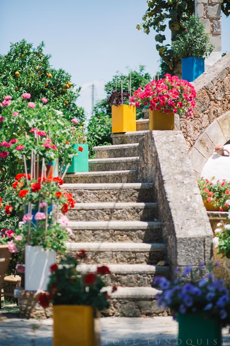 Färgglad blommor och stentrapp på Manousakis Winery, Chania - Kreta. Foto: Tove Lundquist, fotograf Malmö.