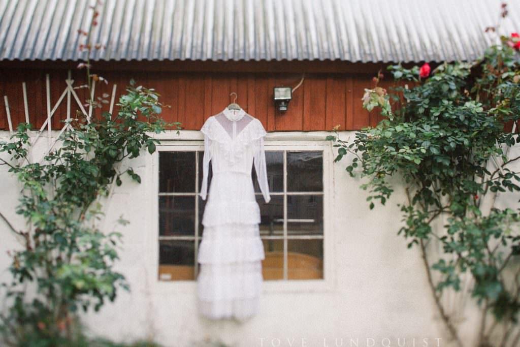 Bröllop på Österlen - bild på en vintage bröllopsklänning i spets från 50-talet upphängd på en rustik lada i rött med rosenbuskar om vardera sida. Foto: Tove Lundquist, bröllopsfotograf på Österlen.