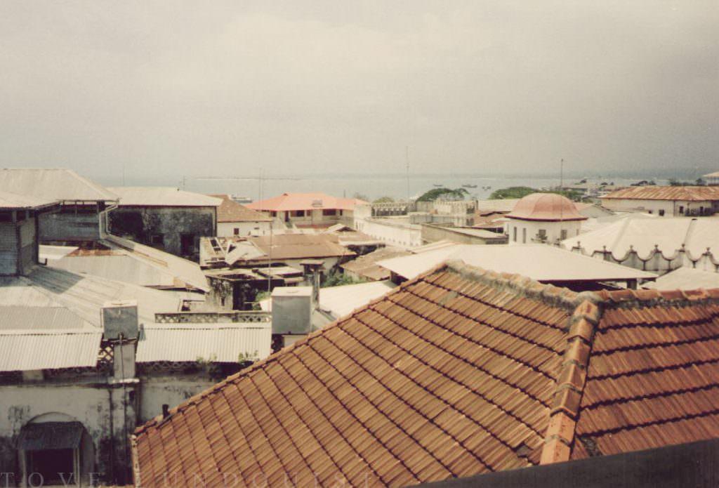 Vy från hustak i Stone Town, Zanzibar - Tanzania. Bilden togs 1997. Fotograf är Tove Lundquist.