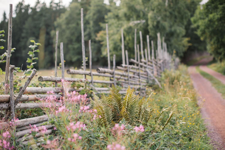 Bild på grusväg ute vid Lövö, Oknö som ligger utanför Mönsterås.